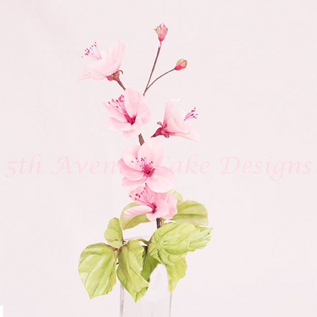 Sugar Cherry Blossoms Wedding Tutorial