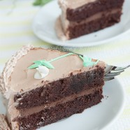 Belgium Chocolate Cake