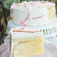 Summertime Cherry Blossom Cake