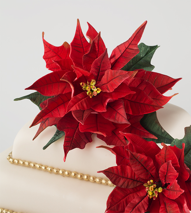 poinsettia sugarpaste video