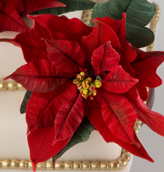 perfect poinsettia cake
