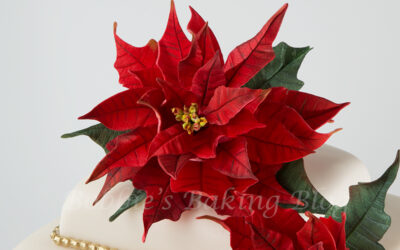 Poinsettia Cake, A Peek into our Holiday Traditions