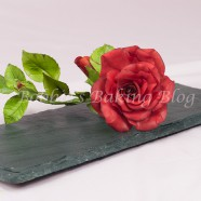 Learn How to Create a Gumpaste Life-Like Rose: From Bud to Fully Open Series 1