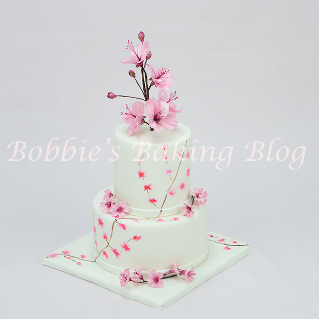 learn how to hand paint cakes