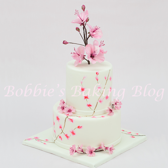 learn how to hand paint cakes like 5th avenue cake designs
